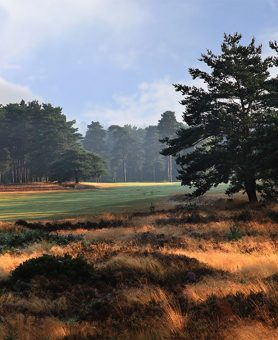 Hankley Common Golf Day