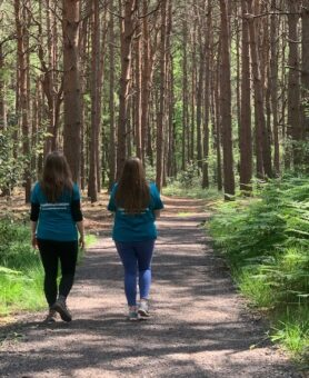 Introducing the Hospice Woodland Walk